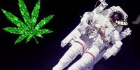 Hemp in Space – Hemp sent to International Space Station by Space Tango
