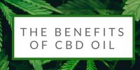 Suffering from Pain? 10 Benefits of CBD Oil You Never Knew