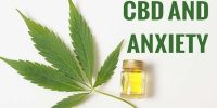CBD for Anxiety – CBD and its Efficacy in Treating Anxiety