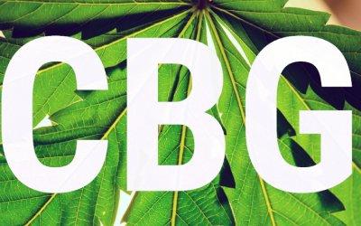 CBG Guide