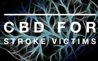 CBD Oil For Stroke Victims
