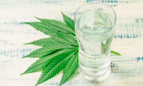Ban on CBD-Infused Beverages