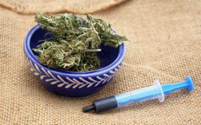 Phoenix Tears – An Alternative Cannabis Medicine