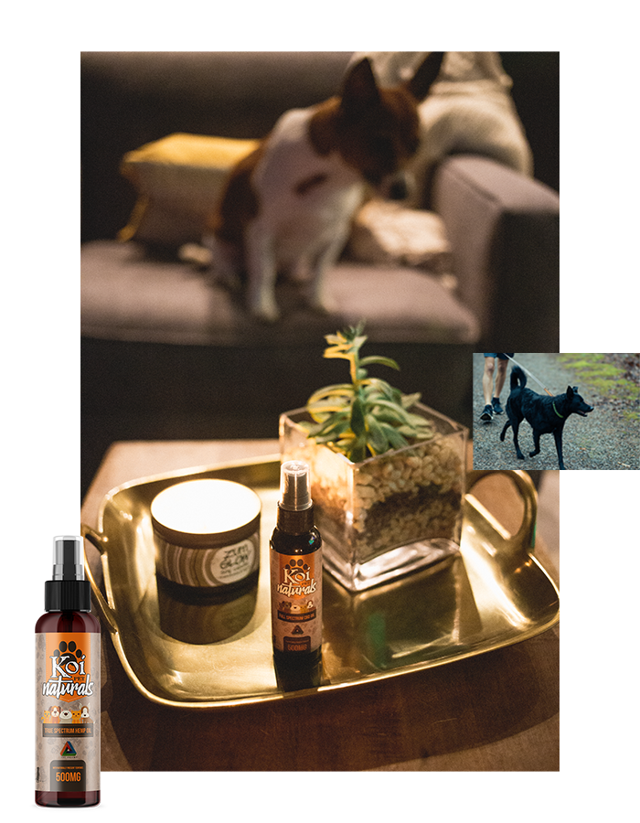 Koi Naturals Hemp Extract CBD Pet Spray