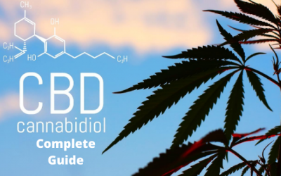 All You Need To Know About CBD – Complete Guide